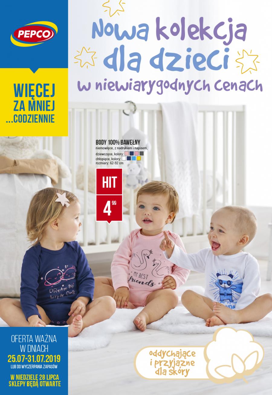 19_06_p43_leaflet_pl_web-1
